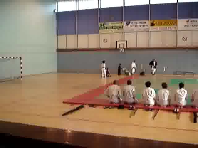 Voir la photo stage aikido bordeaux 3